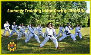 Chosun Training in the Park @ Warwick Town Park